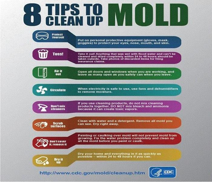 8 safety tips for cleaning mold