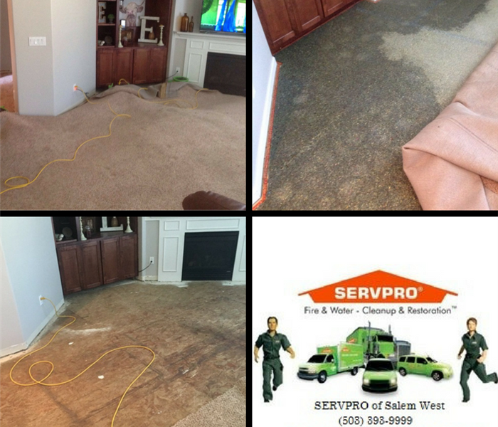Water Damage Sink Overflow in Dallas, Oregon