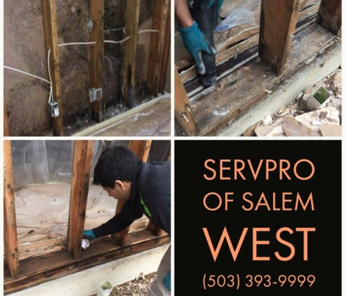 Commercial Commercial Building Mold Damage - Salem, Oregon