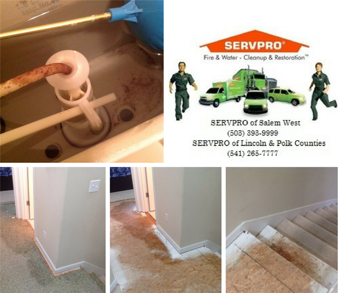 Water Damage Cracked Toilet Float - Salem, Oregon