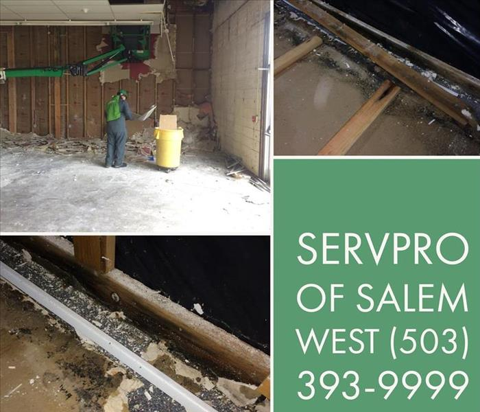 Commercial Large Scale Mold Cleanup - Salem Oregon