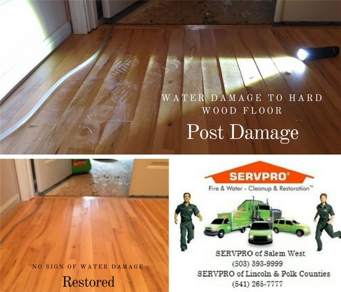 Water Damage Water damage to Hardwood Flooring, Monmouth, Oregon