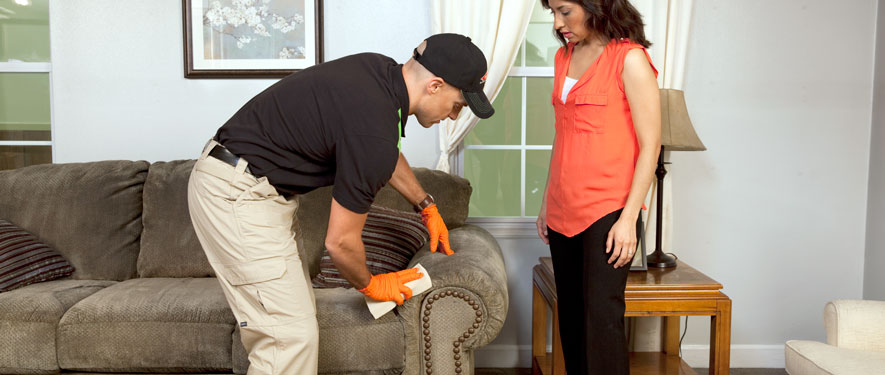 Salem, OR carpet upholstery cleaning