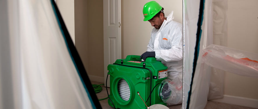 Salem, OR mold cleanup