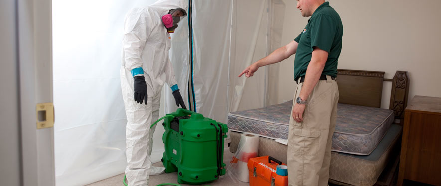 Salem, OR mold removal process